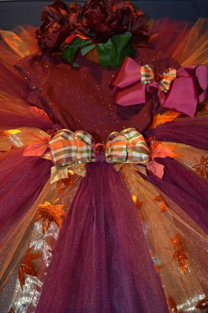 Burgundy fairy fall tutu dress set for 3t for Sale in Phoenix, AZ