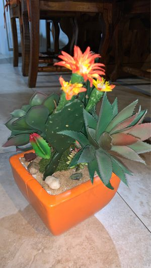fake succulent and cactus plants for Sale in Miami, FL