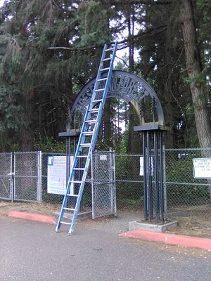 Werner 20' fiberglass extention ladder for Sale in Spanaway, WA