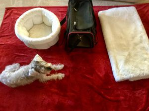 Dog, Cat,Pet luxury living... bed, carrier,throw, puppy pad package. for Sale in Los Angeles, CA