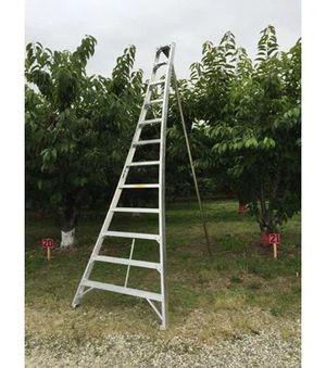 12ft tallman tripod orchard ladder for Sale in Edmonds, WA