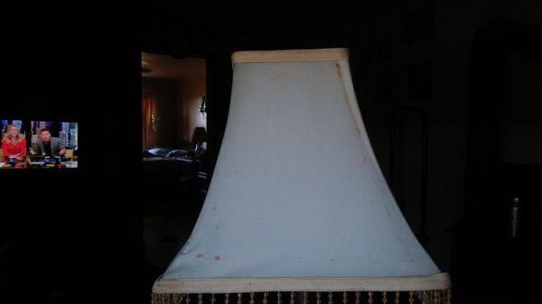 Mountain Lion Lamp