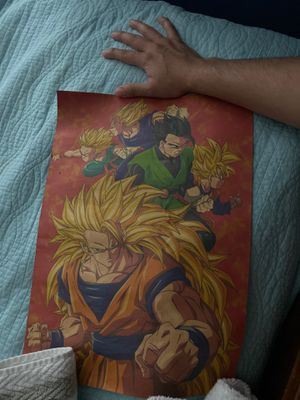 Dragon ball z roll up poster for Sale in Miramar, FL