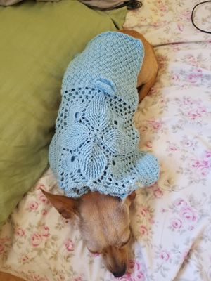 Trajes para perritos / dog clothes for Sale in Madera, CA