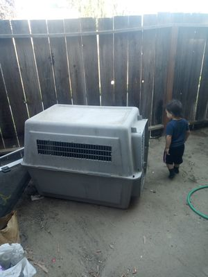Xxl dog crate for Sale in Parlier, CA
