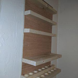 Essential Oils Or nail Polish Storage Shelf for Sale in Livonia, MI
