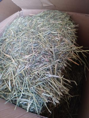 Timothy hay 3/4 cord with rabbit food for Sale in Perris, CA