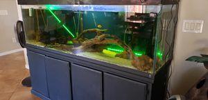 """180 Gallon Aquarium x large 72"""" long for Sale in Litchfield Park, AZ"""