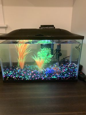 10 Gallon Aquarium with Accessories for Sale in Glenview, IL