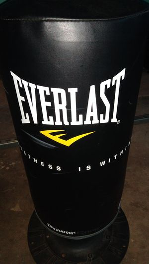 Everlast punching bag for Sale in Bostonia, CA