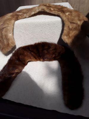 Vintage Mink/Fox Collar for Sale in Eugene, OR