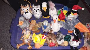 16 beanie Babies birds for Sale in Columbus, OH