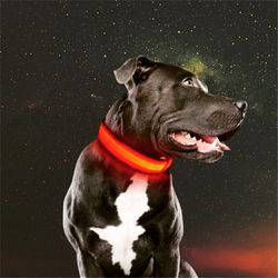 Dog Collar LED USB Rechargeable for Sale in Morgan Hill,  CA