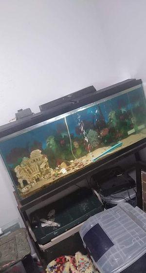 Fish tank for Sale in Gonzales, LA