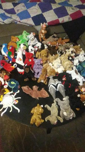 Beanie baby for Sale in Sebring, FL