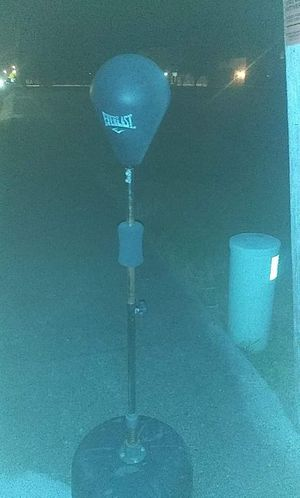 Punching bag for Sale in Victoria, TX