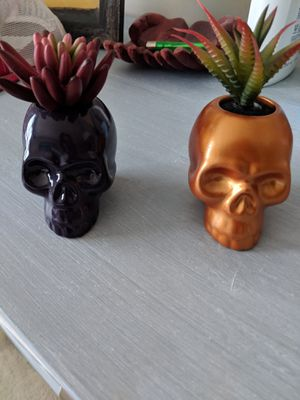 Two mini skull planters for Sale in Westmont, IL
