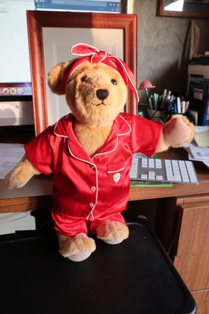 American Girl Teddy Bear in Red Satin PJs for Sale in Libertyville, IL