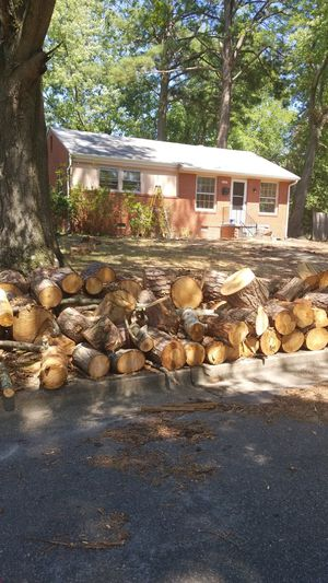 Free Wood pickup 2141 Van Dorn St Petersburg 23805 for Sale in Colonial Heights, VA