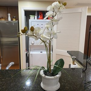 Beautiful & New Orchid Plant - Fake/Faux/Artificial - Phalaenopsis for Sale in Arlington, VA