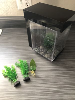 Small Beta Tank for Sale in Phoenix, AZ
