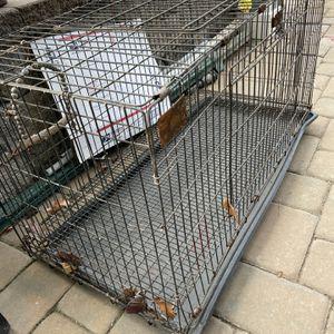 Medium Size Cage for Sale in Belleville, NJ