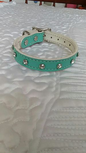 Small dog collar for Sale in Worcester, MA