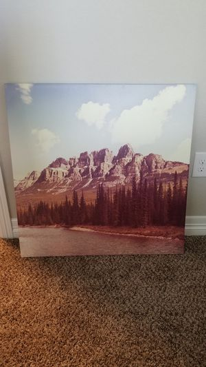 Canvas Wall Art for Sale in Colorado Springs, CO