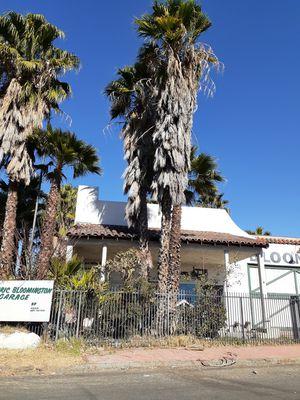 Se podan palmas y arboles de todo tipo- palms and trees trimming for Sale in Riverside, CA
