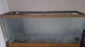 55 gal Pre-drilled fish tank for Sale in Tampa, FL
