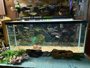 55 gallon aquarium w/filters, heater Nd light many extras for Sale in West Homestead, PA