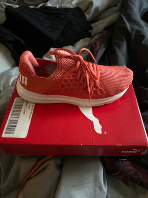 Brand new pumas for Sale in Columbus, OH