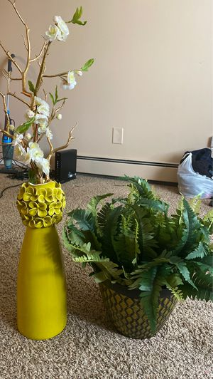 Free vases for Sale in Minneapolis, MN