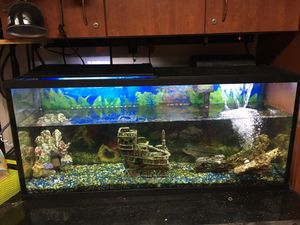 55 gallons fish tank with lots of extra for Sale in Portland, OR