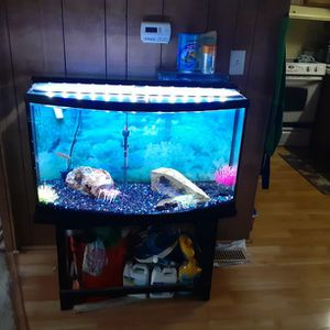 35? Gallon Bow Front Fish Tank With Everything Except The Filter Pictured ****PENDING till Sunday **** for Sale in Everett, WA