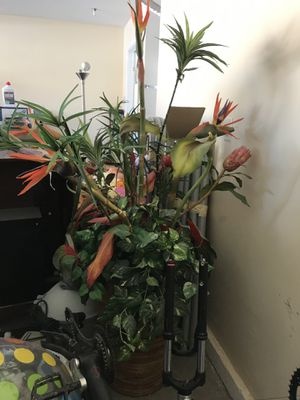 5 foot plant fake for home decor for Sale in North Las Vegas, NV