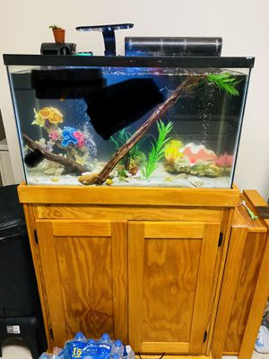 Fish tank /fresh water for Sale in Clearwater, FL