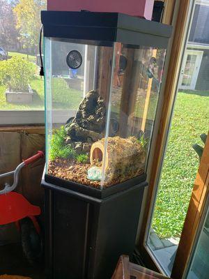 40 gallon terrarium for Sale in Fort Wayne, IN