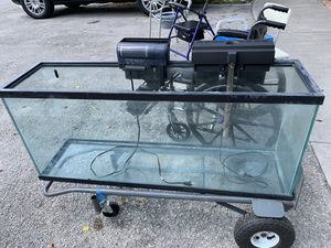 50 gallons fish tank with filters for Sale in Miami, FL