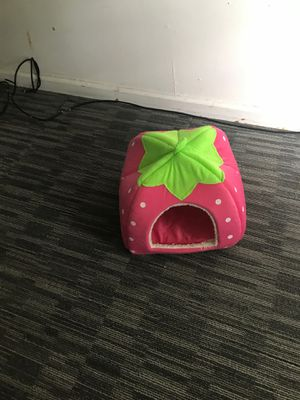 Little house for cats 🐈 or little dog 🐕 nice for Sale in Cleveland, OH
