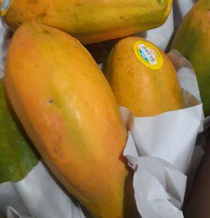 Ricas papayas dulces. Hoy Viernes for Sale in Homestead, FL