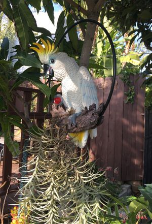 Tropical Bird Parrot Statue Patio Lawn Yard Porch Home Decor Figurine Sculpture for Sale in Los Angeles, CA