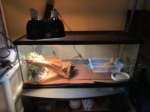 Tank and everything in pic for Sale in Slidell, LA