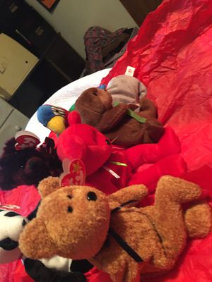 TY beanie baby your choice 50$ each for Sale in New Braunfels, TX