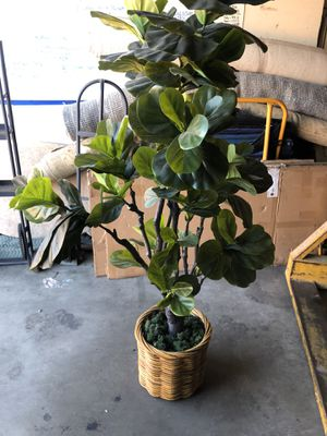 House plant , fake. for Sale in San Marcos, CA