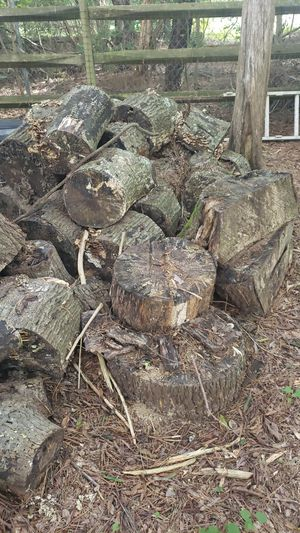 Free already weathered wood for Sale in Mint Hill, NC