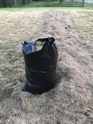 Free cut bagged grass for Sale in Houston, TX