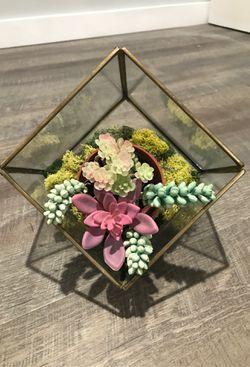 Geometric succulent decor for Sale in Tucson,  AZ