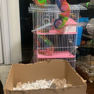 Cage For Sale Small Pet Or Pets for Sale in El Monte, CA