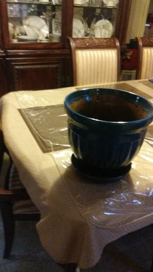 Glass plant pot for Sale in Philadelphia, NJ